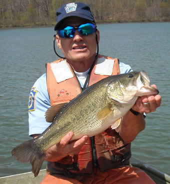 Pfbc 2010 biologist report indian creek reservoir for Pa fish records