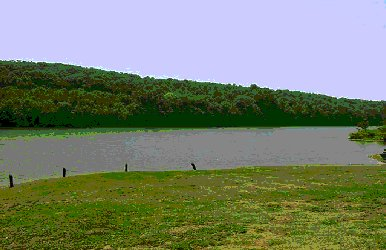2001 biologist report kaercher creek dam for Spring creek pa fishing report