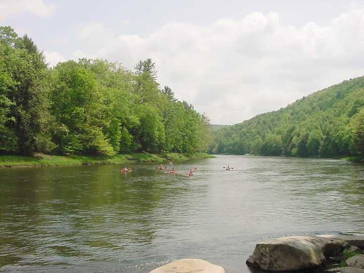 2003 biologist report clarion river for Spring creek pa fishing report