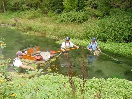 2003 biologist report big spring creek for Spring creek pa fishing report