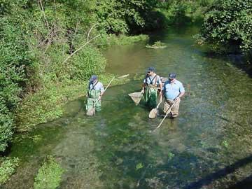 2005 biologist report big spring creek for Spring creek pa fishing report