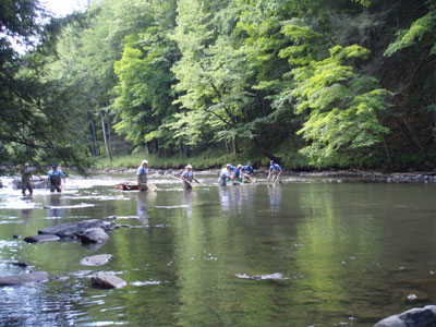 Pfbc 2007 biologist report penns creek for Spring creek pa fishing report
